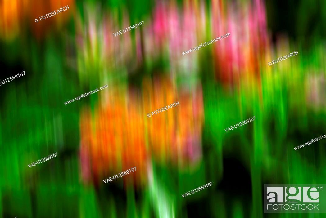 Stock Photo: background, colourful.