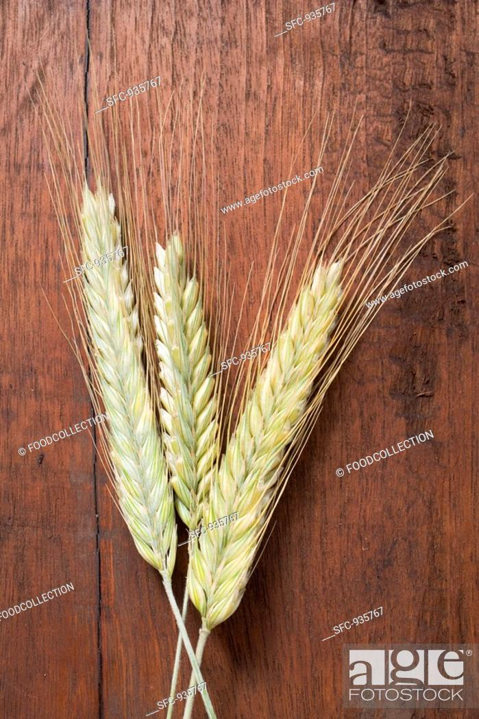 Stock Photo: Three cereal ears rye and barley on wooden background.