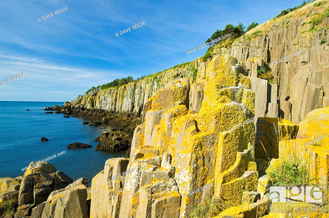 Stock Photo: basalt rock cliffs covered with lichens, Brier Island, Bay of Fundy, Nova Scotia, Canada.
