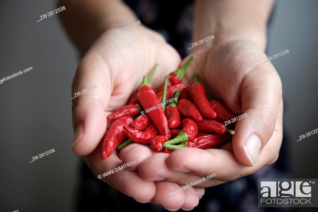 Stock Photo: Thai bird's eye chilies-Capsicum frutescens.