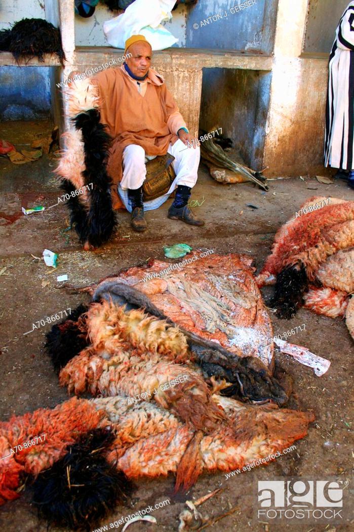 Stock Photo: Berber sells sheep skins in the Medina (Souk) of Marrakesch.