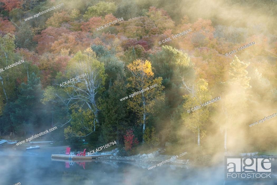 Stock Photo: Fog on an autumn morning, Oxtongue Lake, Ontario, Canada.