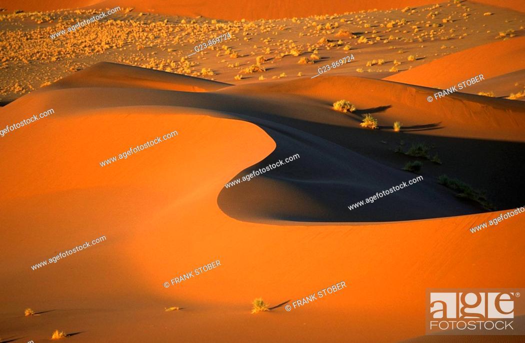 Stock Photo: Namibia - Desert impressions.