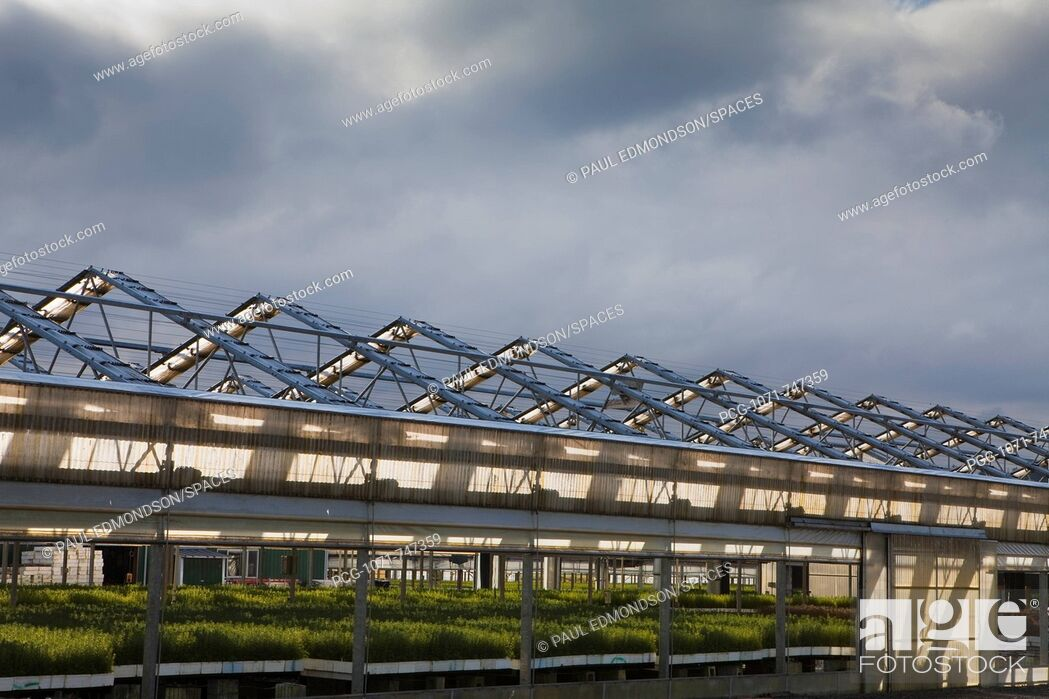 Stock Photo: Large Greenhouse.