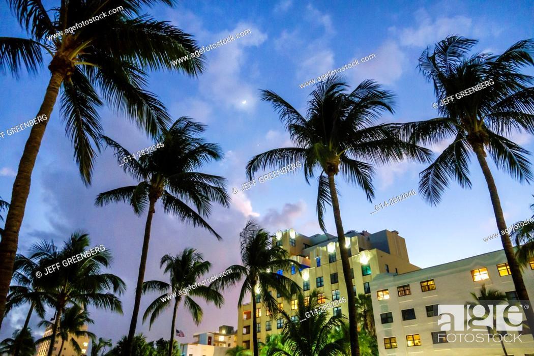 Stock Photo Florida Miami Beach Ocean Drive Lummus Park Coconut Palm Trees Netherland Hotel Dusk Evening Night Moon