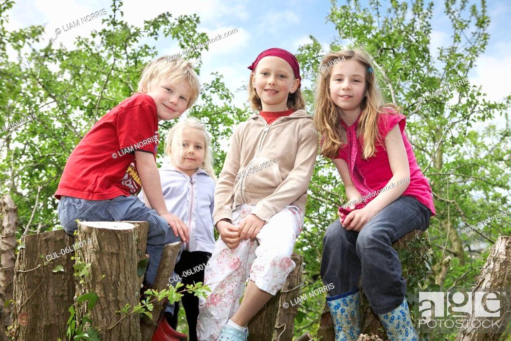 Stock Photo: Four children in a tree.