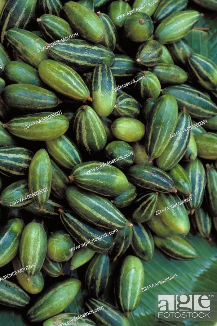 Stock Photo: Pile of ripe tindora Coccinia grandis.