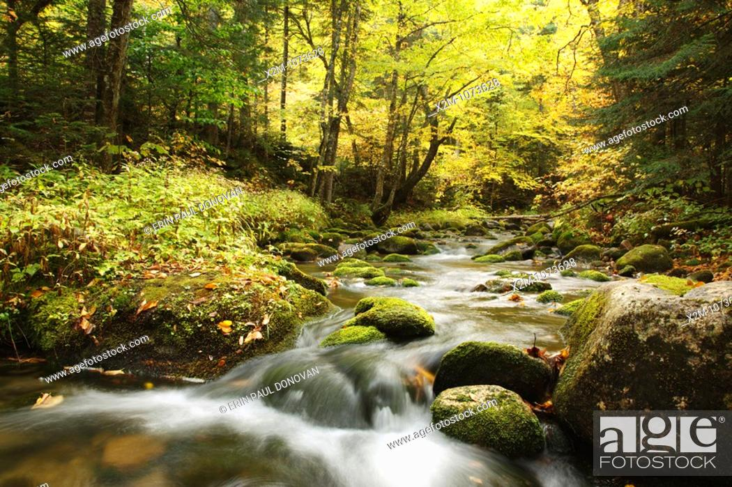 Stock Photo: South Branch of the Israel River during the autumn months which runs along Jefferson Notch Road in the White Mountains, New Hampshire USA.