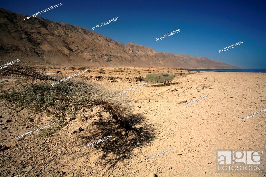 Stock Photo: desert, blue, sky, mountains.