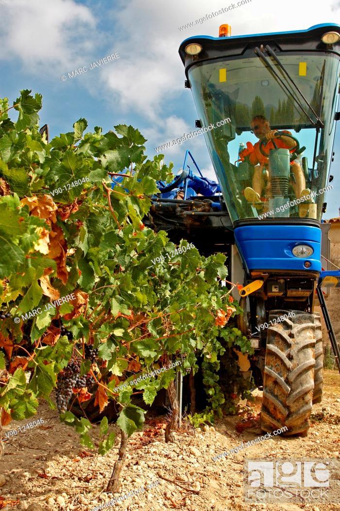Stock Photo: Grape tractor, El Penedés, Catalonia, Spain.