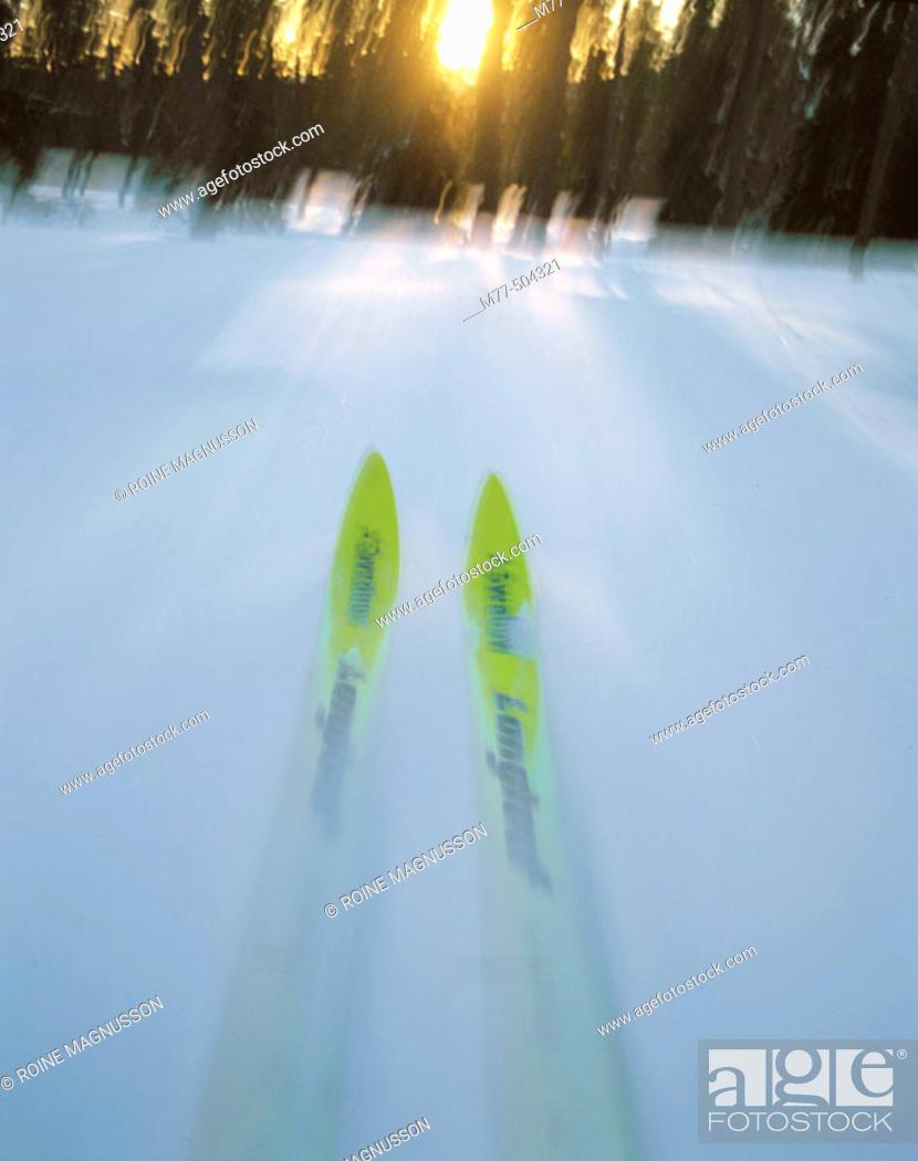 Stock Photo: Skiing, forest, snow, winter, cold, motion, ski. Sälen. Dalana. Sweden.