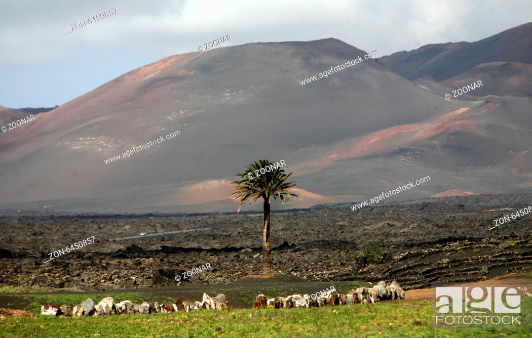 Stock Photo: EUROPE CANARY ISLANDS LANZAROTE.