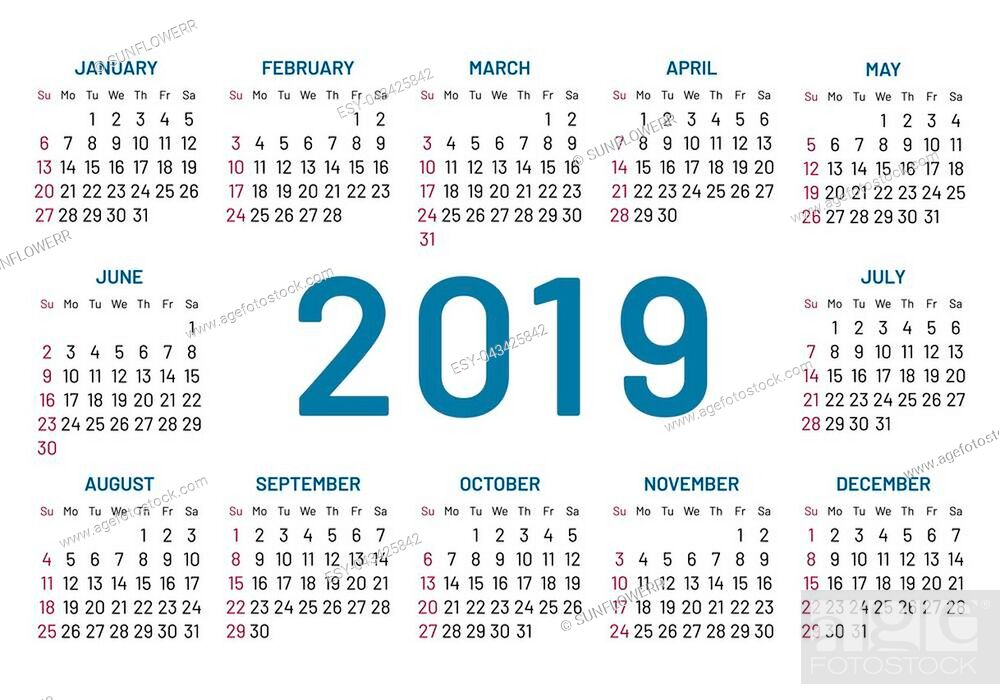 Stock Photo: Simple pocket calendar 2019 center year, flat, isolated. Plain annual menology in minimalistic design. illustration of chart.