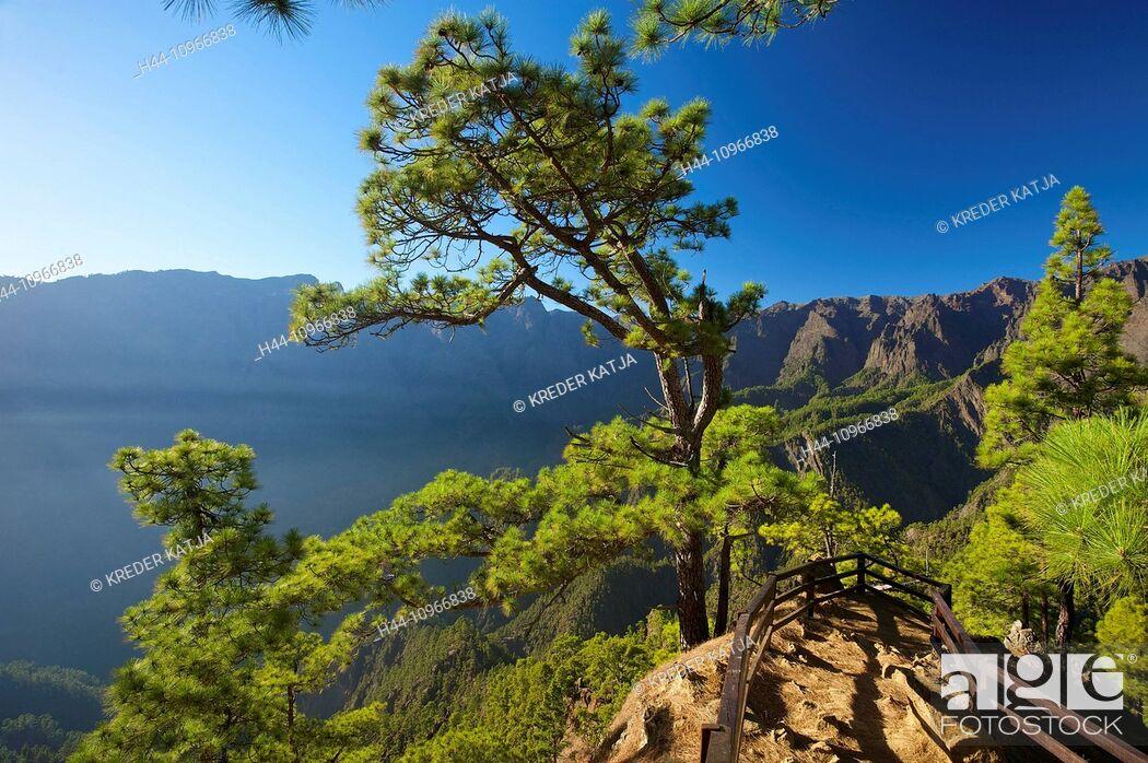 Stock Photo: Canaries, Canary islands, isles, La Palma, Spain, Europe, outside, day, nobody, Parque Nacional de la Caldera de Taburiente, Taburiente, national park.