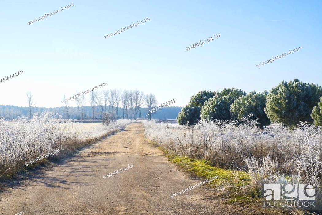 Stock Photo: Winter landscape. Cuellar, Segovia province, Castilla Leon, Spain.