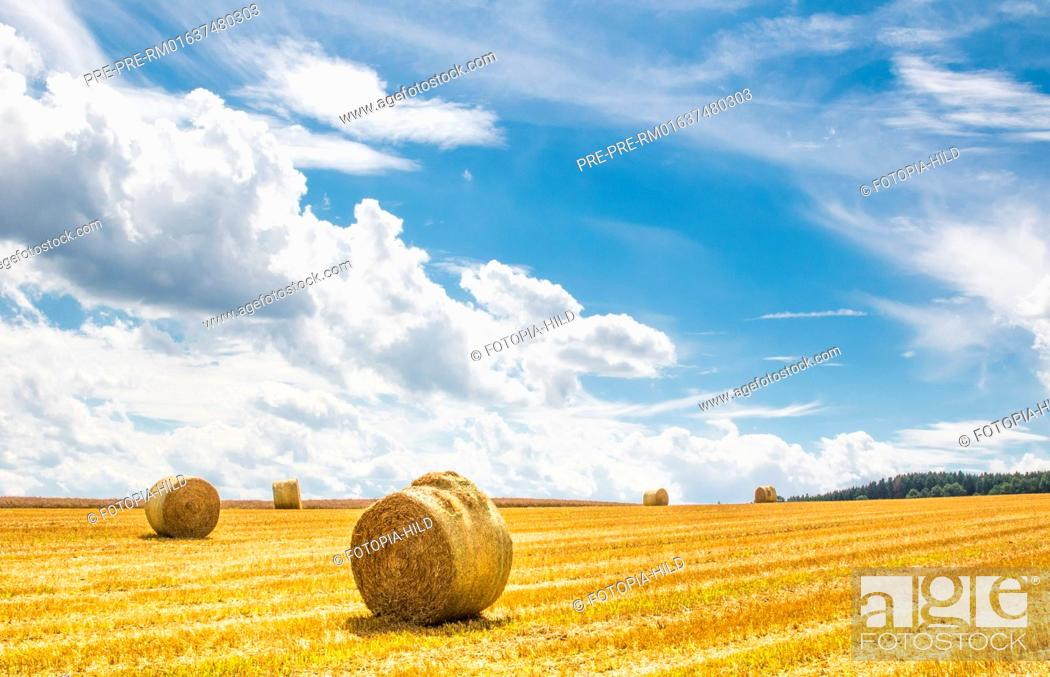Stock Photo: Round straw bales on a stubble field between Dankelshausen and Bühren, Samtgemeinde Dransfeld, Göttingen District, Lower Saxony, Germany.