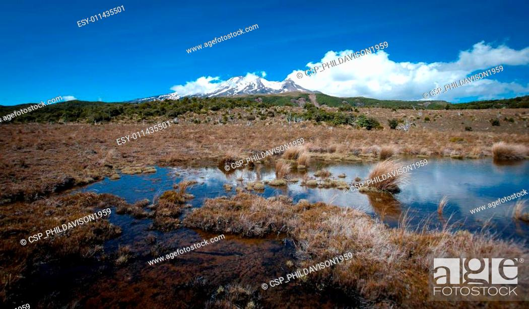 Stock Photo: Mt Ruapehu.