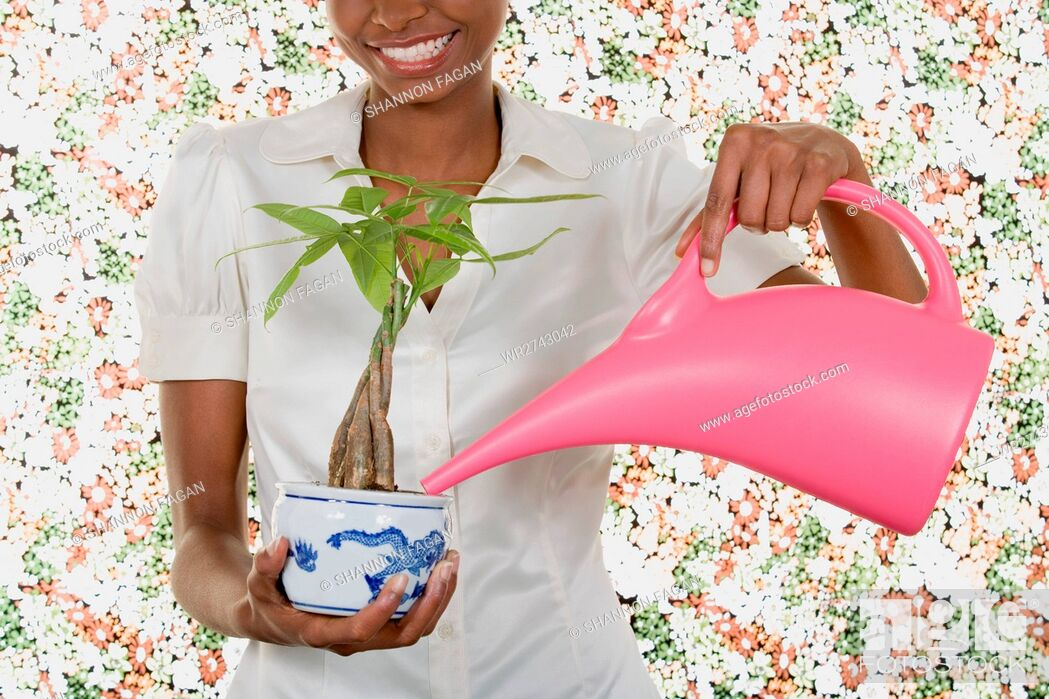 Stock Photo: Woman watering houseplant.