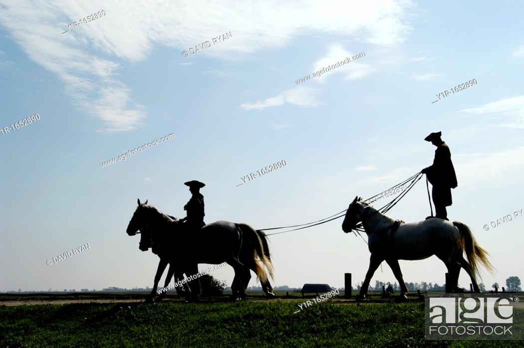 Stock Photo: Hungary, A 'chicos' cowboy giving a riding demonstration at a farm in the 'Puszta', near Kalocsa.
