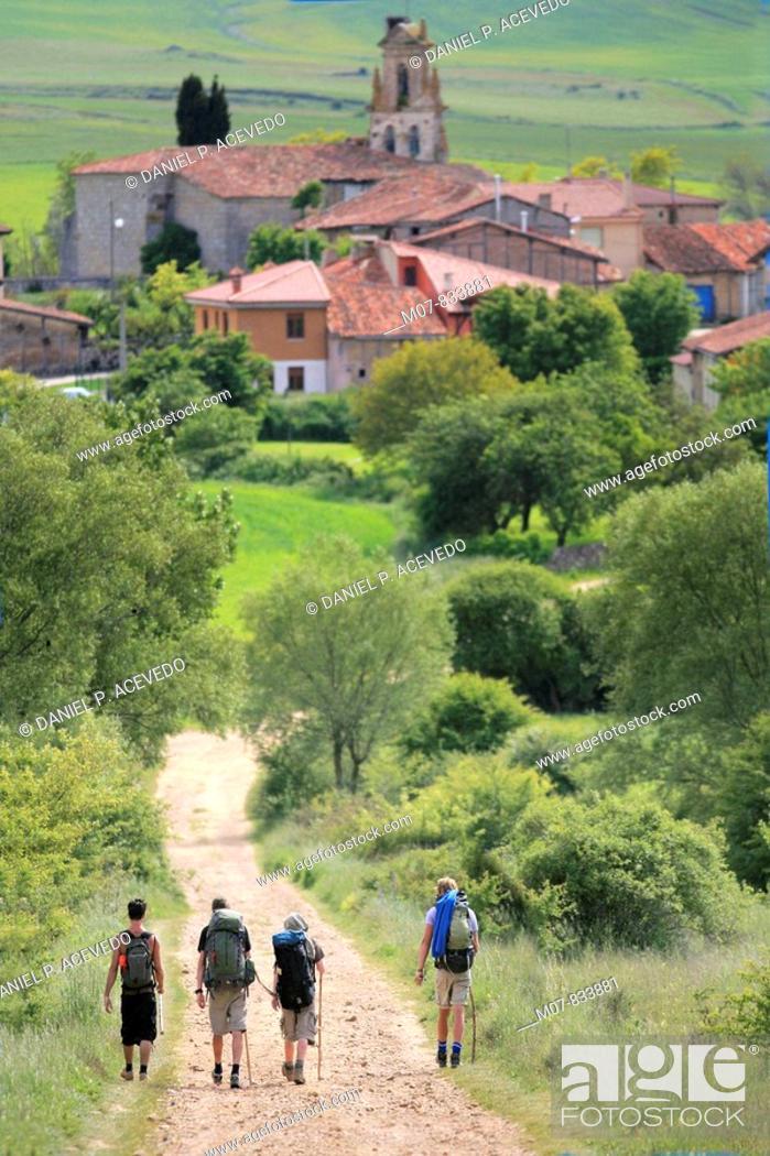 Imagen: Camino de Santiago, Santigo route trough Ages village, Burgos, Castilla, Spain.