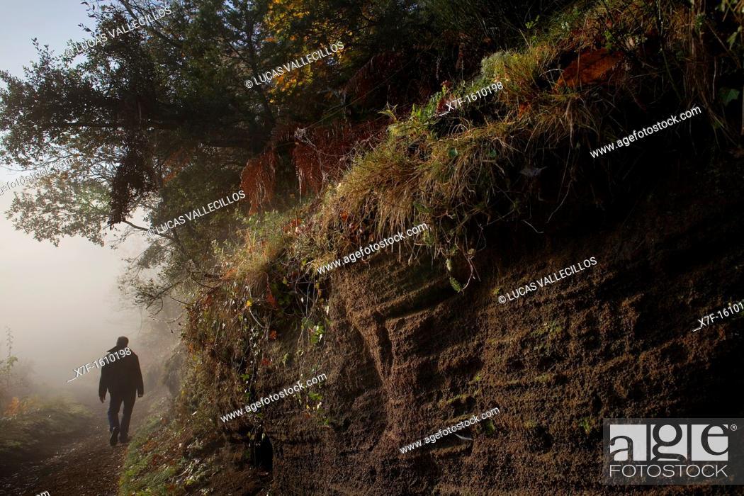 Stock Photo: Way into the crater Santa Margarida Volcano,Garrotxa Natural Park,Girona province  Catalonia  Spain.