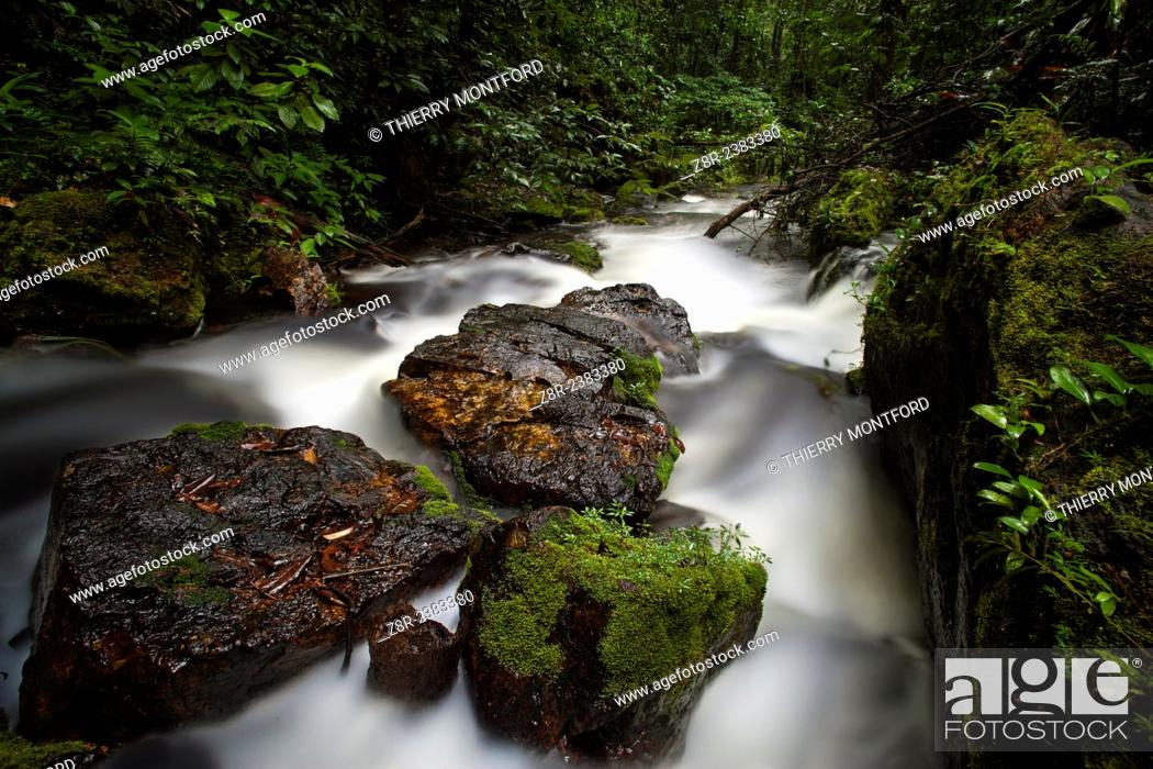 Stock Photo: Little river with rapids Diamond Creek on the Kaw mountain. French Guiana.