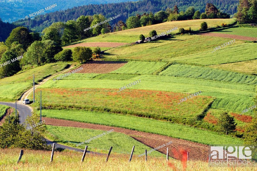 Stock Photo: France, Auvergne, Puy de Dome, Livradois Forez, Col des Supeyres et ST Antheme le Fayt.