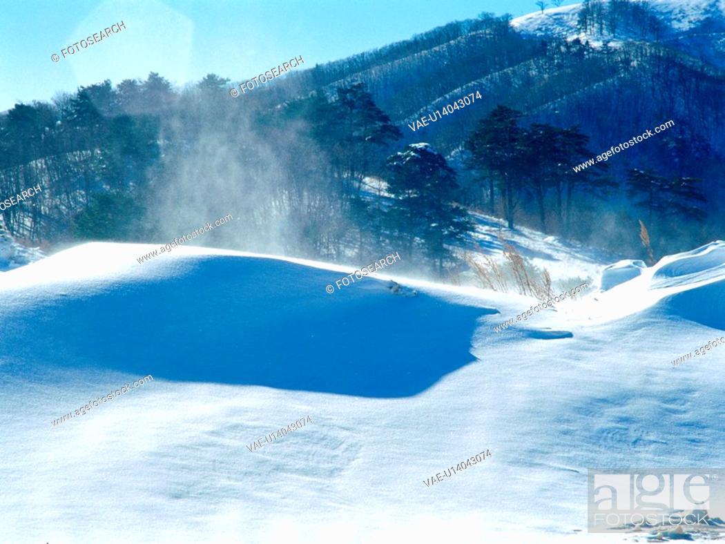 Stock Photo: mountain, nature, tree, snow, scenery, hill, winter.