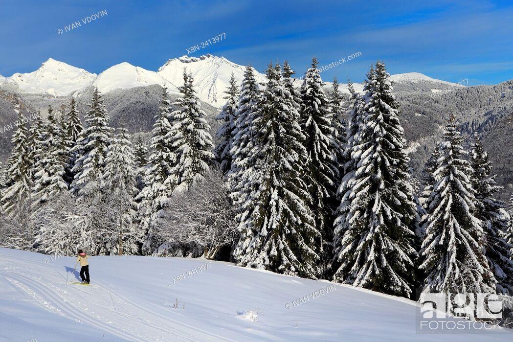 Stock Photo: Plateau d'Agy, Saint-Sigismond, Haute-Savoie, France.