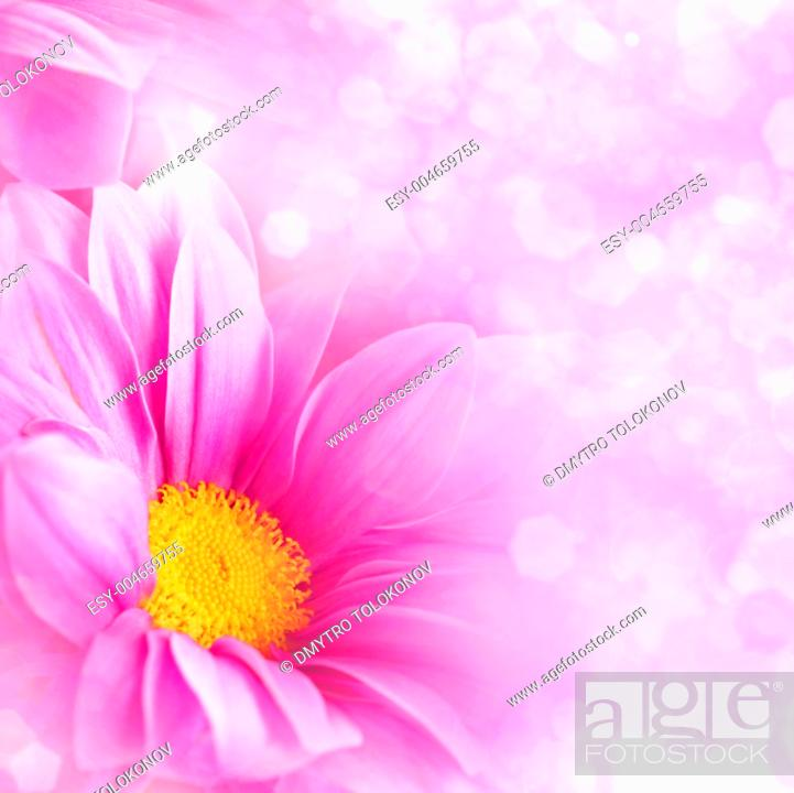 Stock Photo: Abstract floral backgrounds for your design.
