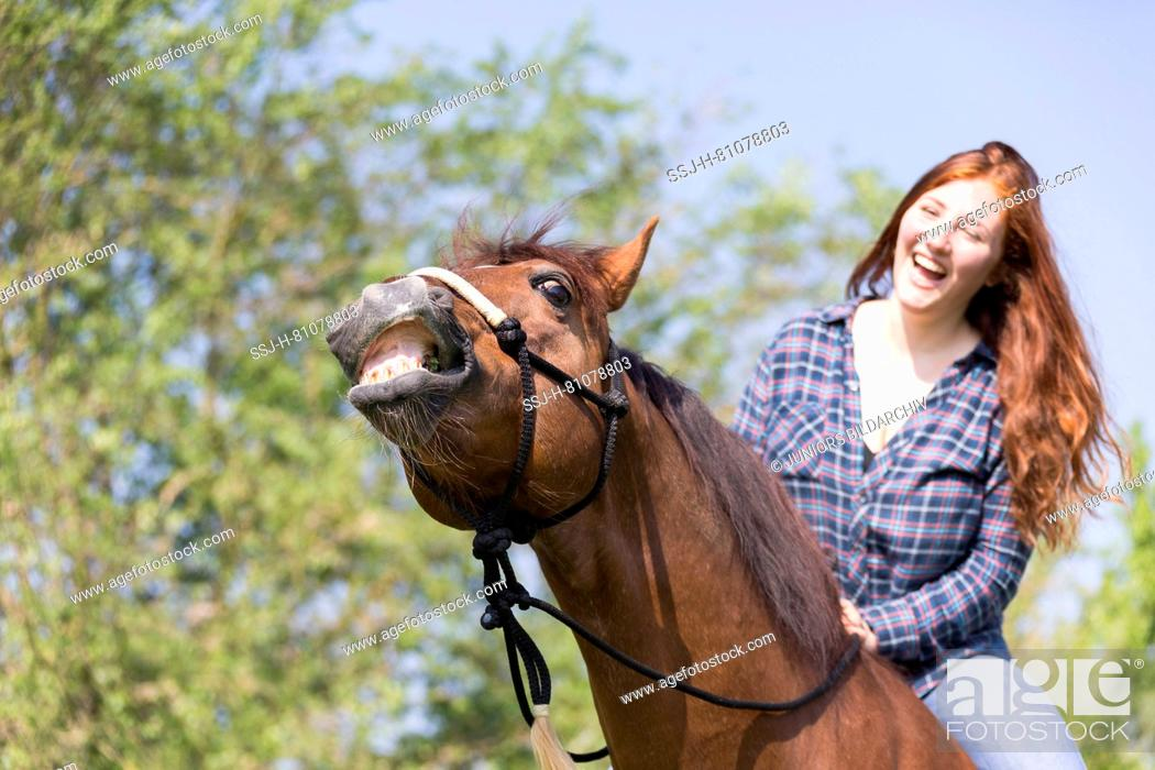 Stock Photo: Missouri Fox Trotter. Red-haired young woman on chestnut gelding on a pasture, both of them laughing. Switzerland.