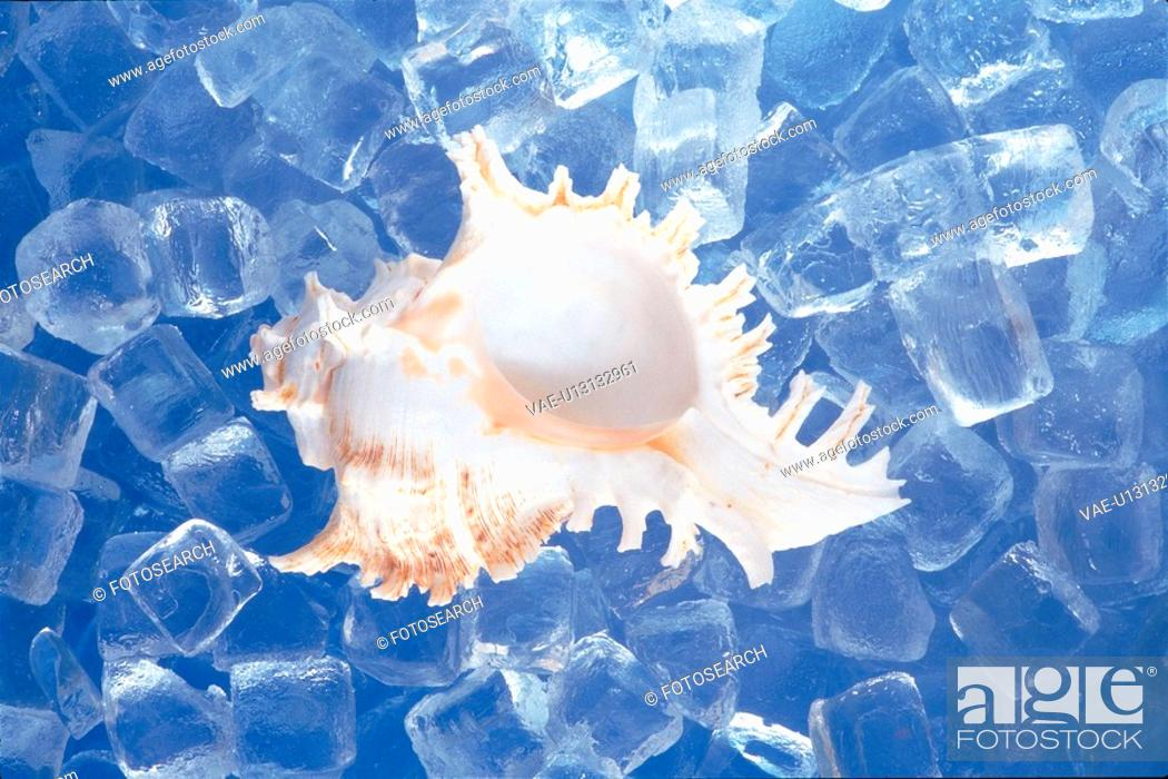 Stock Photo: cold, water, ice cube, cube, natural world, nature.