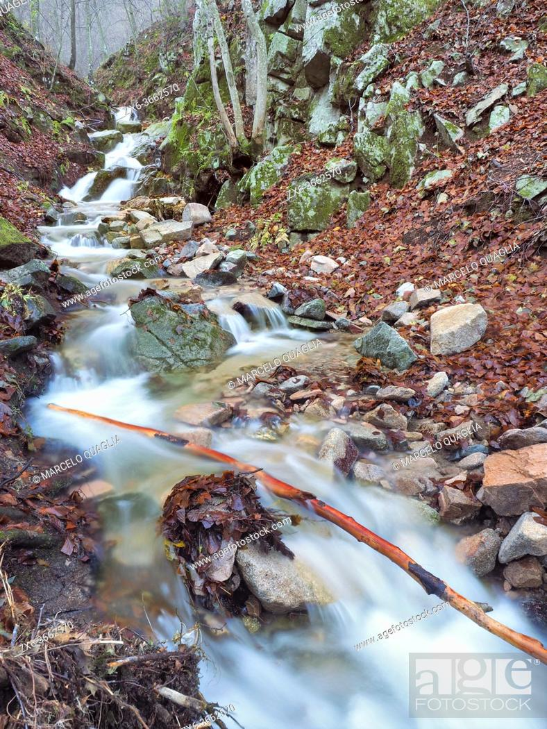 Stock Photo: Marianegre stream with small waterfalls. Autumn time at Montseny Natural Park. Barcelona province, Catalonia, Spain.