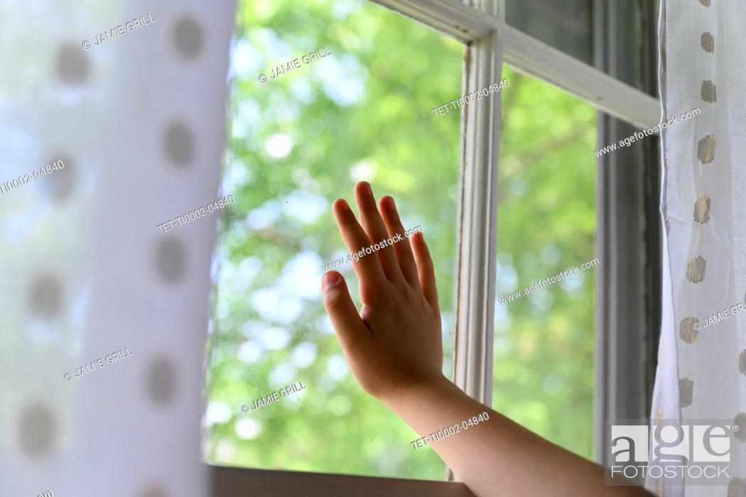 Stock Photo: Child's hand touching window with trees behind.