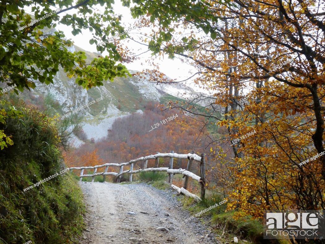 Stock Photo: Path, Somiedo, Asturias, Spain.