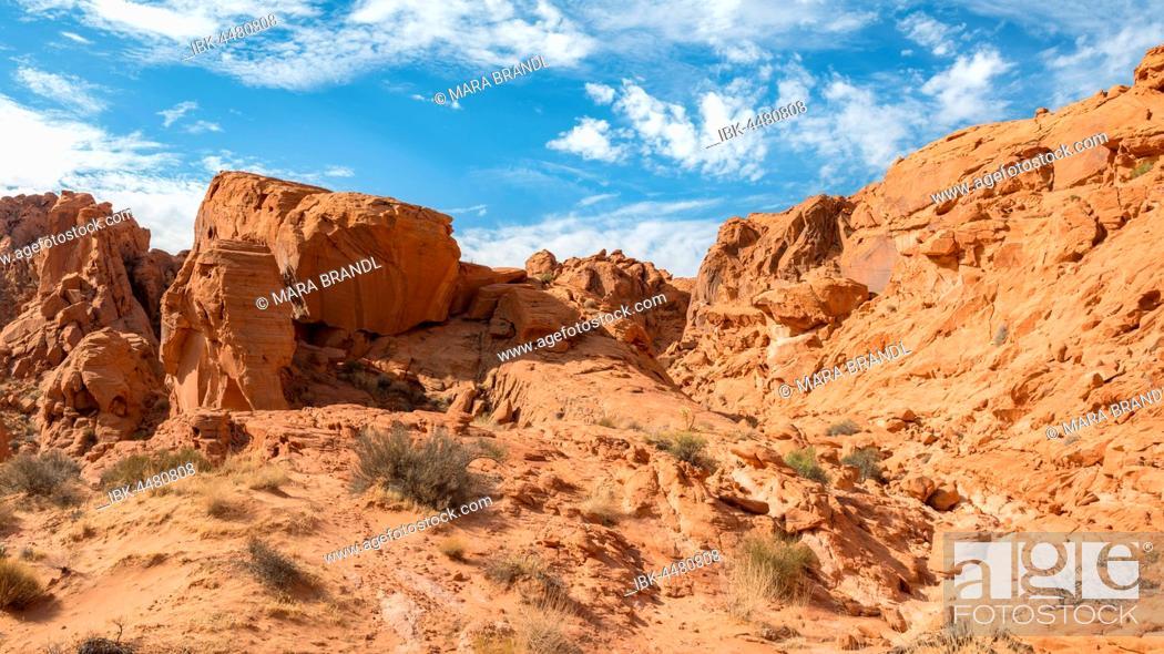 Stock Photo: Rainbow Vista, red sandstone cliffs, Mojave Desert, Valley of Fire, Nevada, USA.