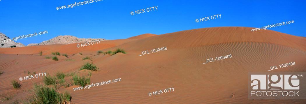 Stock Photo: Desert in the UAE.