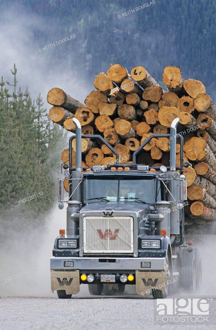 Stock Photo: Loaded logging truck, Houston, BC, Canada.