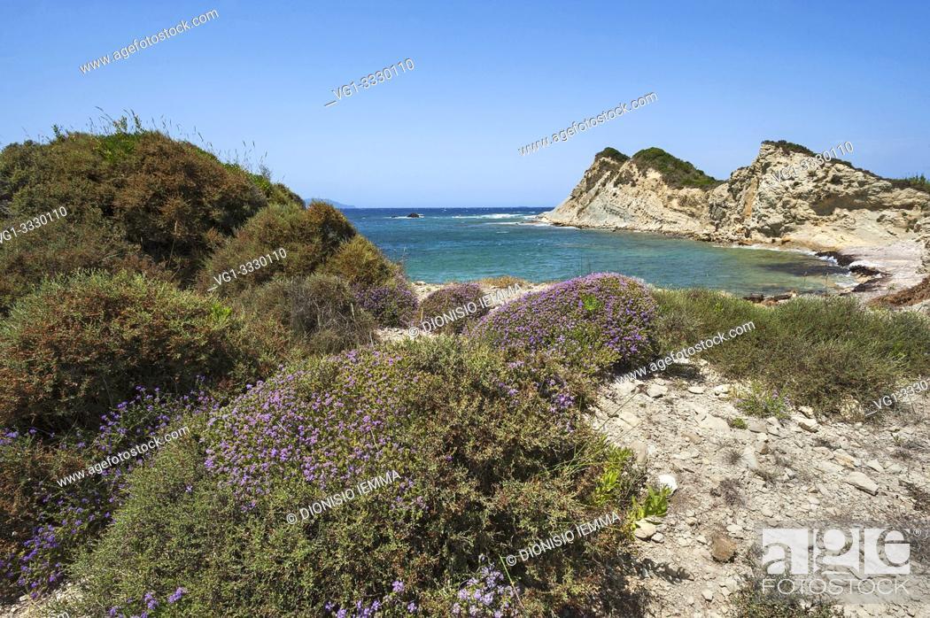 Stock Photo: Greece Erikoussa Island, Ionian Islands, Europe, Corfu district, Fiki coast in the foreground heather shrubs.