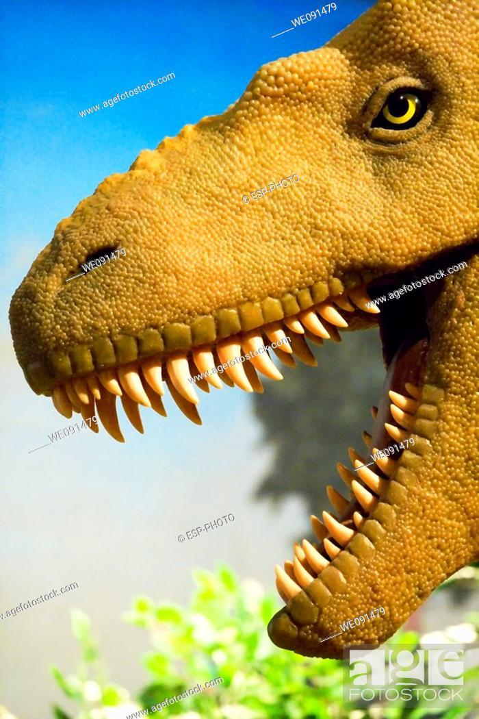 Stock Photo: Tyrannosaurus rex.