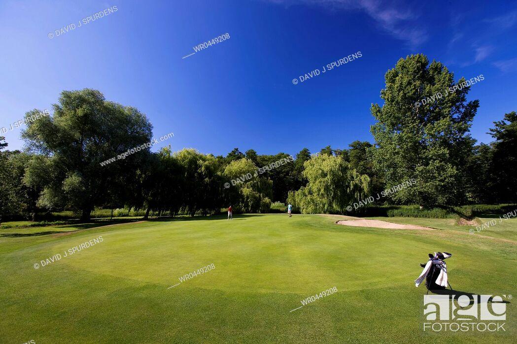 Stock Photo: Golfer putts on beautiful green.