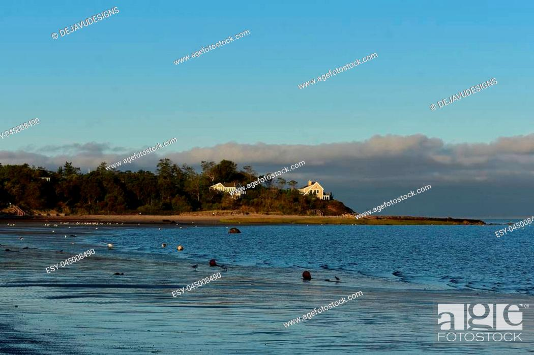 Stock Photo: Pretty beach where seagulls are hanging out.