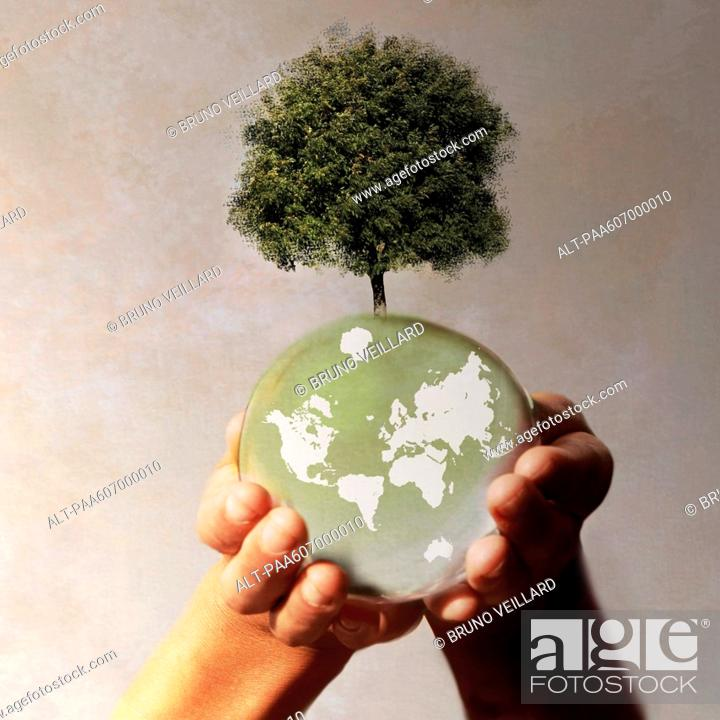 Stock Photo: Hands holding planet earth with tree growing on it.