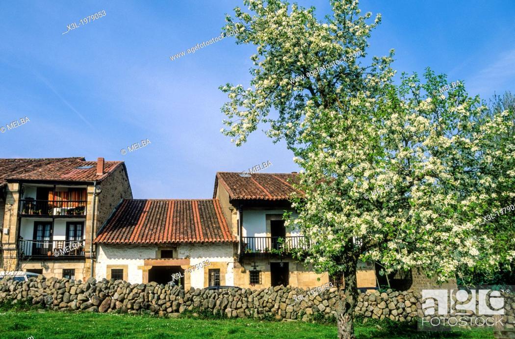 Stock Photo: Sopeña, Cantabria, Spain.