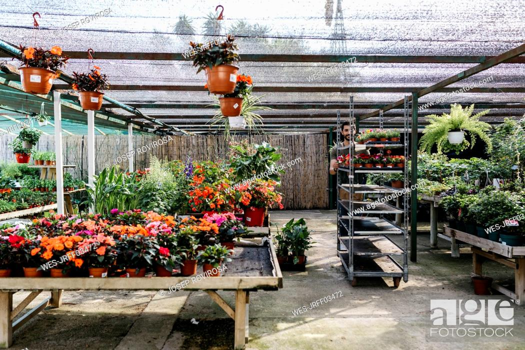 Stock Photo: Worker in a garden center pushing a cart with plants.