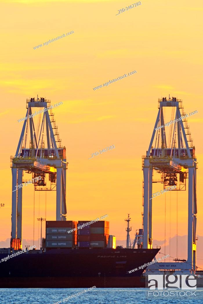 Stock Photo: Container cranes atsunset, Deltaport container terminal, Roberts Bank, British Columbia.