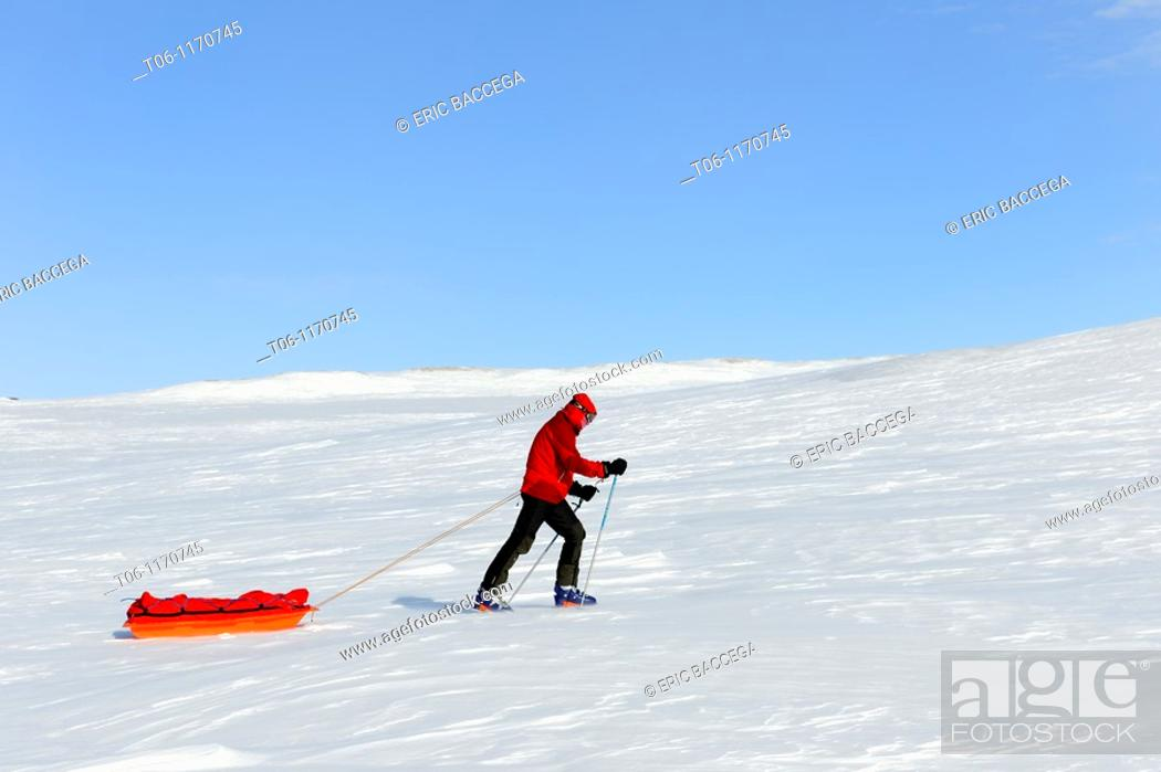 Stock Photo: Winter hiker pulling his pulka on Banks island, North West Territories, Canada.