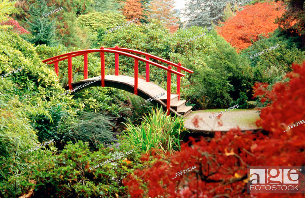 Stock Photo: Red Moon Bridge among rhododendrons and Japanese maple. Kubota, Seattle. Washington. USA.