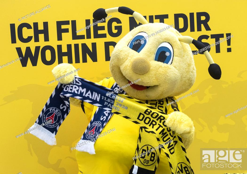 10 March 2020 North Rhine Westphalia Dortmund Mascot Emma Of Borussia Dortmund Shows A Fan Scarf Stock Photo Picture And Rights Managed Image Pic Pah 200310 99 265033 Dpai Agefotostock