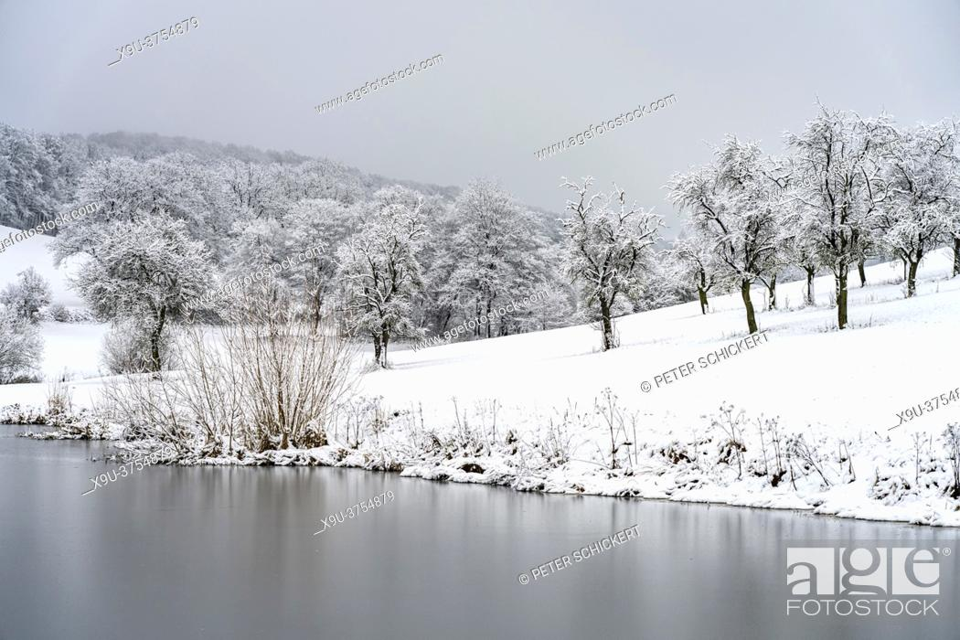 Stock Photo: Verschneite Winterlandschaft im Sauerland, Sundern, Hochsauerlandkreis, Nordrhein-Westfalen | Snowy winter landscape in Sundern, Hochsauerland district.